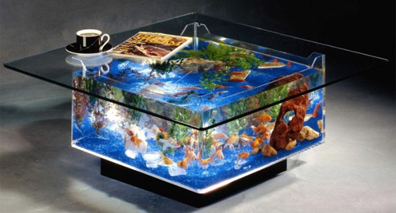 9 Cool Home Aquariums | Spot Cool Stuff: Design