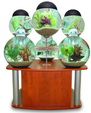 Aquarium Decoration Ideas on Cool Home Aquariums   Spot Cool Stuff  Design