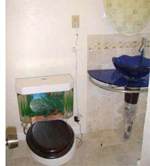 Cool Aquariums: Fish & Flush Toilet