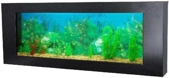 Cool Aquariums: On The Edge