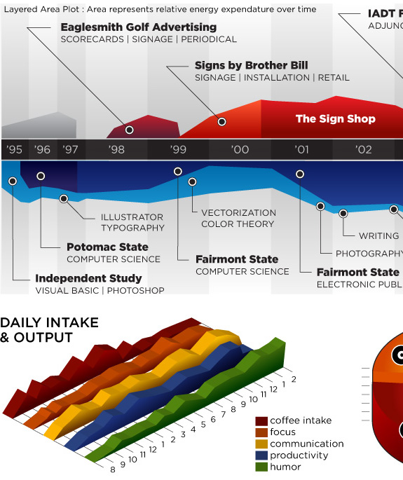 Large & Cool Infographic Resum