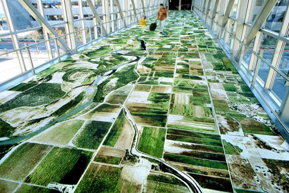 Google Earth Carpets